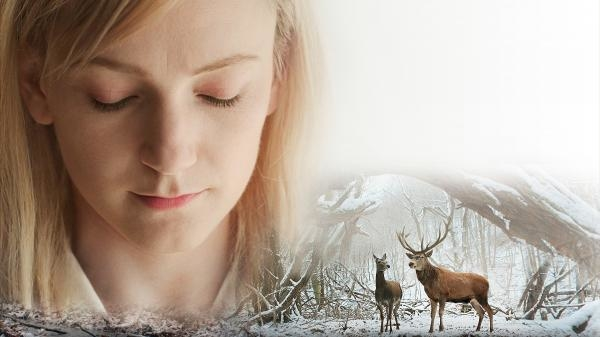 Sleduj online Drama, Romantický O tele a duši na !