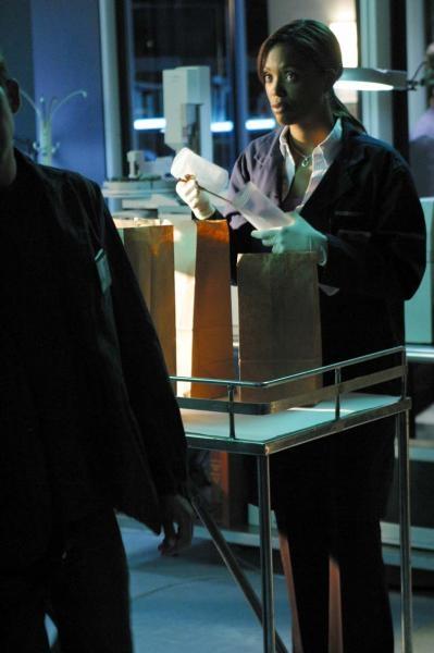 CSI: Kryminalne zagadki Las Vegas  V (5)