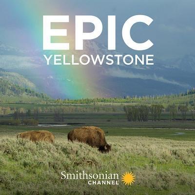 Sleduj online Dokument, Přírodní svět Velkolepý Yellowstone na Prima ZOOM!