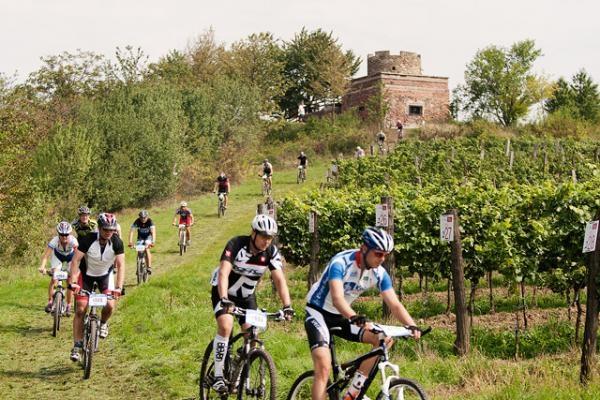 Sleduj online cyklistika Horská kola: Znojmo Burčák Tour Kooperativy na !