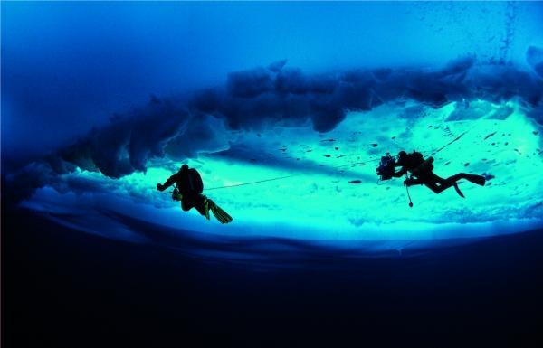 Sleduj online Přírodní svět Pod ledovou hladinou na !