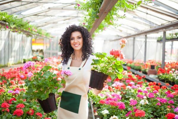 Sleduj online Zahradničení Rok w ogrodzie Extra na TVP1!